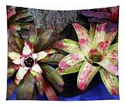 Beautiful Bromeliads Tapestry