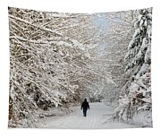 Beautiful Forest In Winter With Snow Covered Trees Tapestry