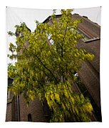 Beautiful Golden Chain Tree In Full Bloom Tapestry