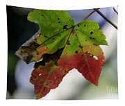 Beautiful Maple Leaf Tapestry