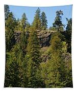 Beautiful Spring Day In Spokane Tapestry