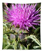 Beautiful Thistle Tapestry