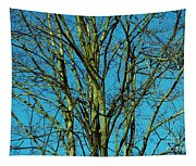 Beautiful Turquoise Sky Tapestry