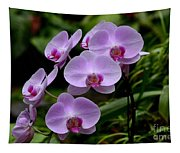 Beautiful Violet Purple Orchid Flowers Tapestry