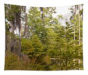 Beauty In  A Swamp Ll Tapestry