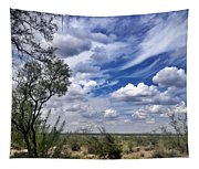 Beauty In The Sky Tapestry