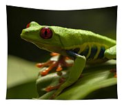 Beauty Of Tree Frogs Costa Rica 3 Tapestry