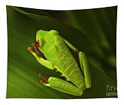 Beauty Of Tree Frogs Costa Rica 6 Tapestry