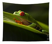 Beauty Of Tree Frogs Costa Rica 7 Tapestry