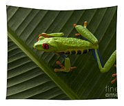 Beauty Of Tree Frogs Costa Rica 8 Tapestry