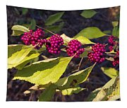Beautyberry Tapestry