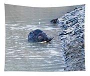 Beaver Chews On Stick Tapestry