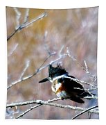 Belted Kingfisher  Tapestry