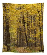 Bench In Fall Color Tapestry