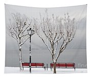 Bench On Lakefront In Winter Tapestry