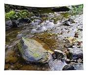 Bending Between The Rocks Tapestry