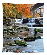 Berea Falls Ohio Tapestry