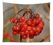 Berries Tapestry