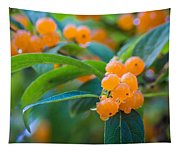 Berrylicious Tapestry