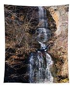Big Bradley Falls 2 Tapestry