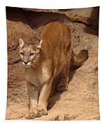 Big Cats Tapestry
