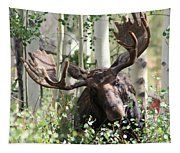 Big Daddy The Moose 3 Tapestry