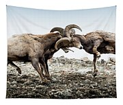Big Horn Sheep Butting Heads Tapestry