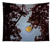 Big Old Autumn Moon Tapestry