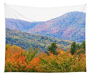 Big Pisgah Mountain In The Fall Tapestry