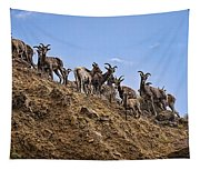 Bighorn Sheep At Blue Mesa Reservoir Tapestry