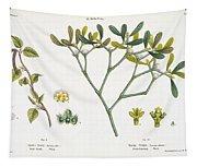 Birch And Mistletoe Tapestry