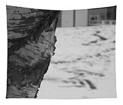 Birch Bark And Snow In Black And White Tapestry