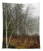 Birch In Winter Tapestry