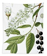 Bird Cherry Cerasus Padus Or Prunus Padus Tapestry