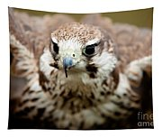 Bird Of Prey Flying Tapestry