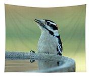 Birdbath Tapestry
