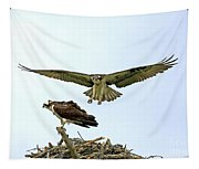 Birds Of Prey Tapestry