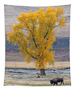 Bison And Cottonwood Tapestry