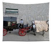 Black And Red Horse Carriage - Vienna Austria  Tapestry