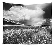 Black And White Meadow Tapestry