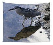 Black Crowned Night Heron And Shadow Tapestry