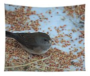 Black Eyed Junco Tapestry