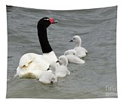 Black Necked Swan Patagonia  Tapestry