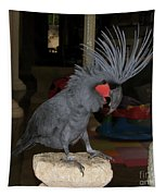 Black Palm Cockatoo Tapestry