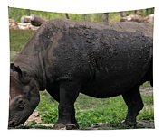 Black Rhino-19 Tapestry