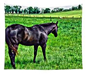 Black Stallion In Pasture Tapestry