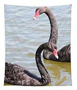 Black Swan Pair Tapestry
