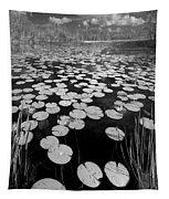 Black Water Tapestry
