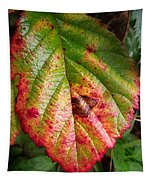 Blackberry Leaf In The Fall 4 Tapestry