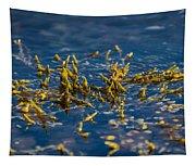 Bladder Seaweed, Fucus Vesiculosus Tapestry